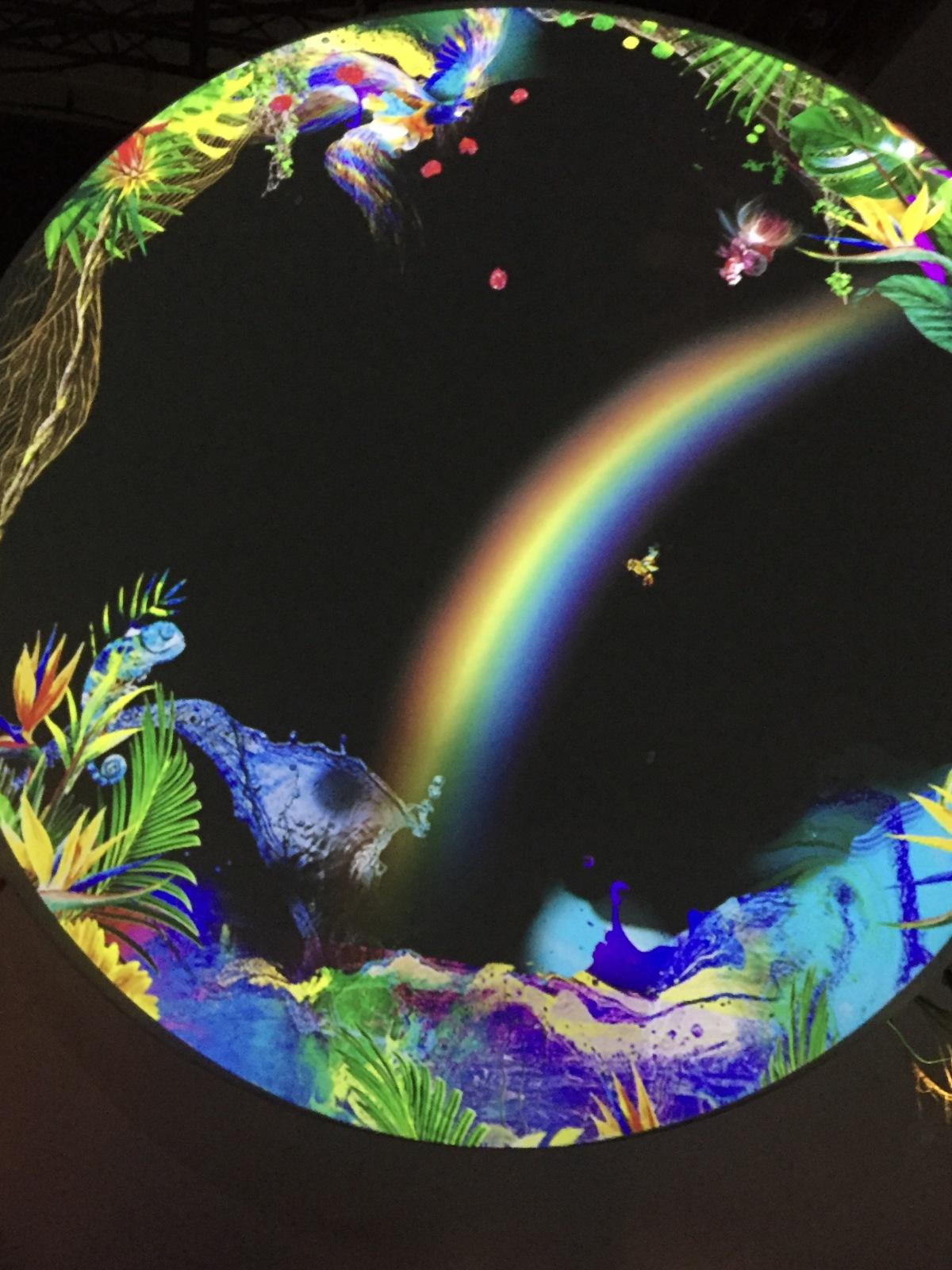 <社会を知る>『FLOWERS BY NAKED 魅惑の楽園』-バーチャルリアリティの未来-